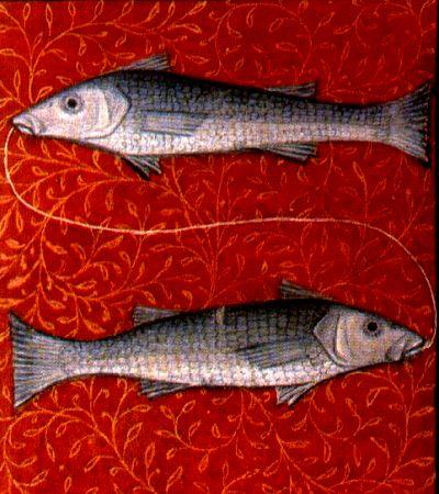 Tierkreiszeichen Fische