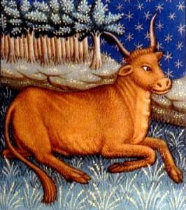 Tierkreiszeichen Stier